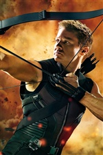Hawkeye em Os Vingadores iPhone Wallpaper