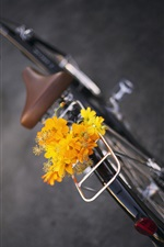 Flores amarelas, bicicleta, bouquet iPhone Wallpaper